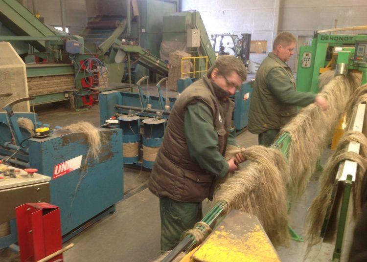 Les fibres longues à la sortie de la chaine du teillage de Bosc Nouvel - Christian Saber