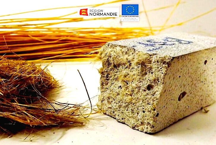 Du lin pour un béton biosourcé - BTONLIN ©ESITC-Caen