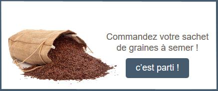 Commandez votre sachet de graines à semer !